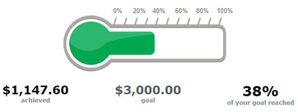 Give Back Nation GivingPortal Fundraising Thermometer