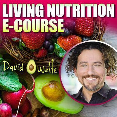 David Avocado Wolfe Living Nutrition E-Course