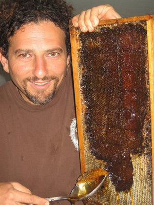 NoniLand Black-Red Honey (Raw, Unheated, Unprocessed) - From David Wolfe's Farm (250mL)