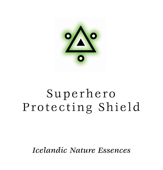 Superhero Protection Shield