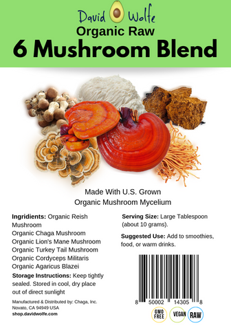 6 Mushroom Blend Powder – Organic, Raw (250g)