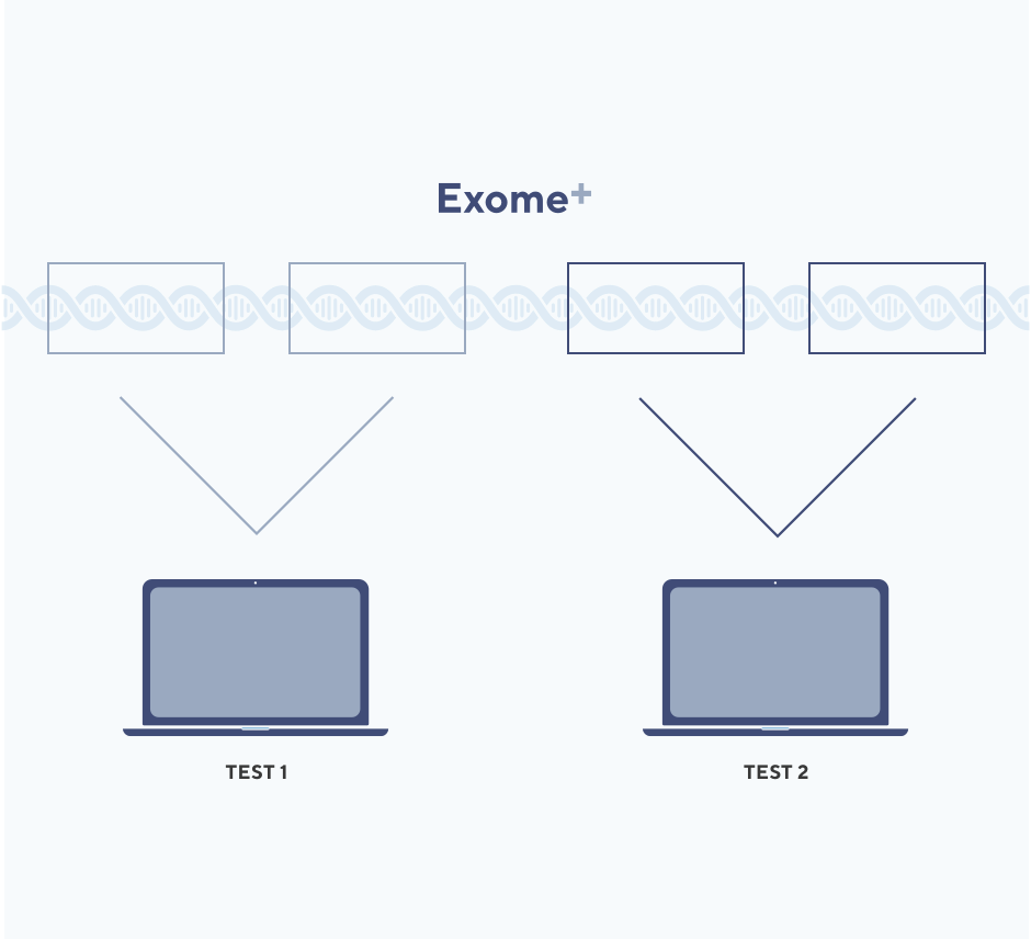 Image showing two computers accessing siloed sections of DNA, demonstrating the each analysis of Exome+ data is targeted and specific, with little chance for secondary findings.