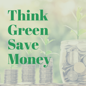 You can be an Eco warrior & save money!