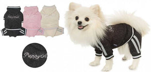 Puppy Angel StarDust Jogging Suit PA-OR050