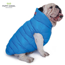 Puppy Angel Love Down Vest For Bulldog (Big Chest, Zipper) PA-OW229