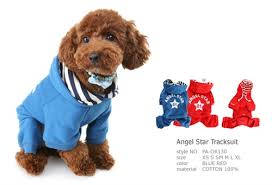 Puppy Angel Start Tracksuit PA-OR130