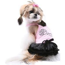 Puppy Angel Rosha Cocktail Dress PA-DR110