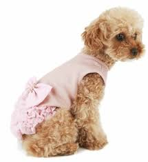 Puppy Angel Luxury Frilled Dress PA-DR134