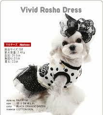 Puppy Angel Vivid Rosha Dress PA-DR106