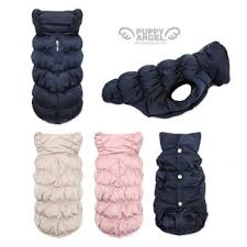 Puppy Angel Padded Vest PA-OW206