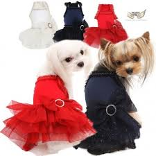 Puppy Angel Party Tutu Dress PA-DR123