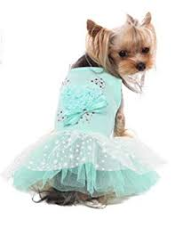 Puppy Angel Sweet Valentine Tutu Dress PA-DR125