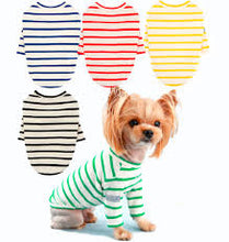 Puppy Angel Saint Angels Round Neck Long Sleeve T-shirts (70%) PA-TS587