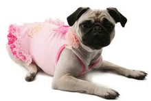 Puppy Angel Alluring Rosha Dress PA-DR105