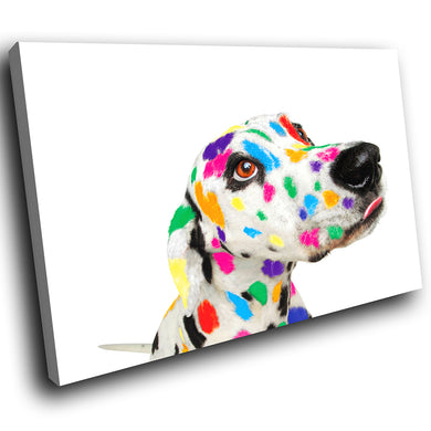 A002 Framed Canvas Print Colourful Modern Animal Wall Art - Rainbow Dalmation Dog Cute-Canvas Print-WhatsOnYourWall