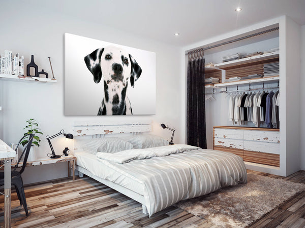 A032 Framed Canvas Print Colourful Modern Animal Wall Art - Black White Dalmation Puppy Dog-Canvas Print-WhatsOnYourWall