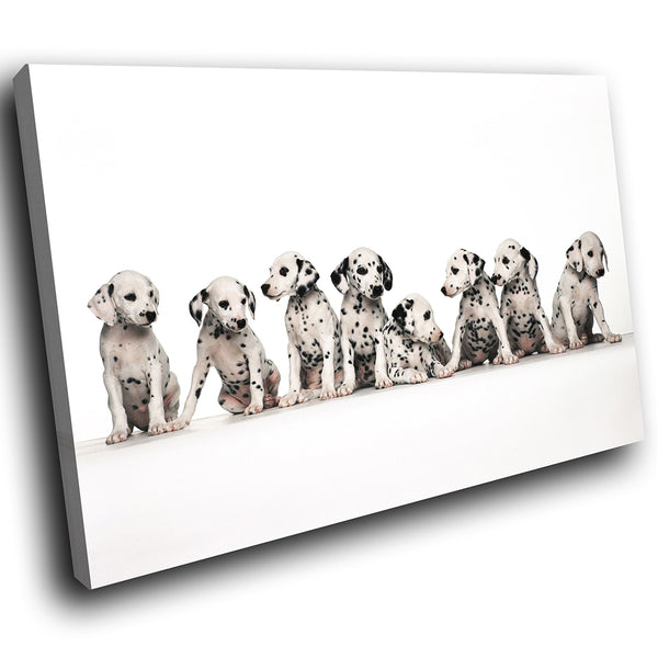 A033 Framed Canvas Print Colourful Modern Animal Wall Art - Cute Dalmation Pupppy Dogs-Canvas Print-WhatsOnYourWall