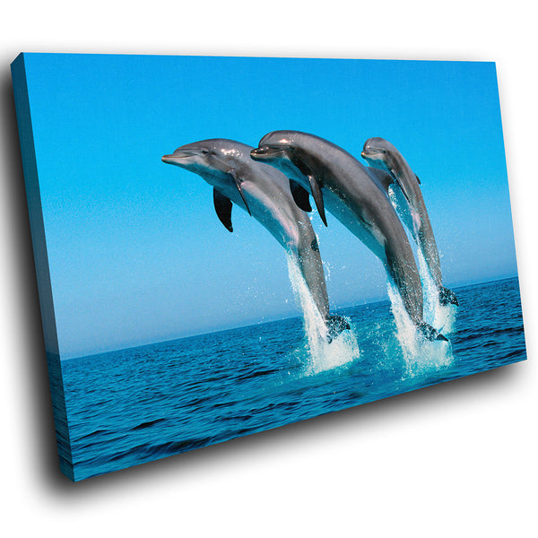 A034 Framed Canvas Print Colourful Modern Animal Wall Art - Blue Dolphin Ocean Splash-Canvas Print-WhatsOnYourWall
