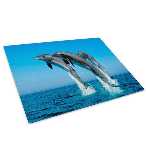 Blue Dolphin Ocean Grey Glass Chopping Board Kitchen Worktop Saver Protector - A034-Animal Chopping Board-WhatsOnYourWall