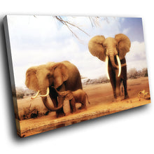 A035 Framed Canvas Print Colourful Modern Animal Wall Art - Brown Baby Elephant Africa Cool-Canvas Print-WhatsOnYourWall