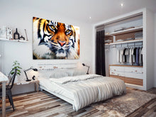 A037 Framed Canvas Print Colourful Modern Animal Wall Art - Brown White Striped Tiger-Canvas Print-WhatsOnYourWall