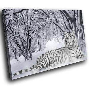 A047 Framed Canvas Print Colourful Modern Animal Wall Art - Snow White Tiger Winter-Canvas Print-WhatsOnYourWall
