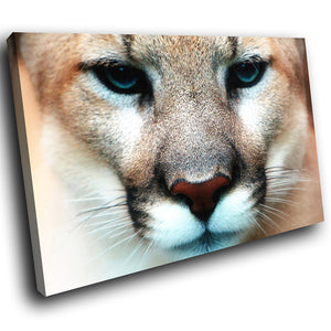 A050 Framed Canvas Print Colourful Modern Animal Wall Art - Brown Lioness Blue Eyes-Canvas Print-WhatsOnYourWall