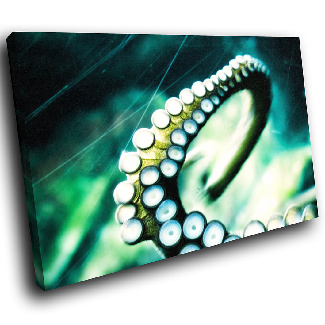 A056 Framed Canvas Print Colourful Modern Animal Wall Art - Blue Green Octopus Animal-Canvas Print-WhatsOnYourWall