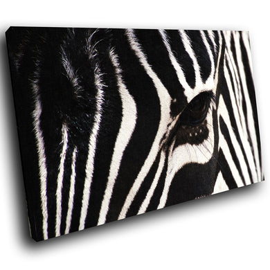 A058 Framed Canvas Print Colourful Modern Animal Wall Art - Black White Zebra Stripes-Canvas Print-WhatsOnYourWall