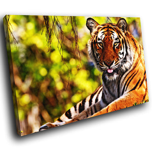 A061 Framed Canvas Print Colourful Modern Animal Wall Art - Orange Tiger Green Jungle-Canvas Print-WhatsOnYourWall
