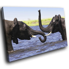 A062 Framed Canvas Print Colourful Modern Animal Wall Art - Blue Elephant Water Fight-Canvas Print-WhatsOnYourWall