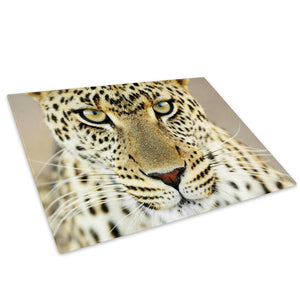 White Yellow Leopard Cat Glass Chopping Board Kitchen Worktop Saver Protector - A064