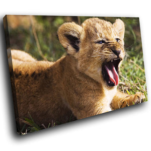 A066 Framed Canvas Print Colourful Modern Animal Wall Art - Brown Lion Cub Cute Cat-Canvas Print-WhatsOnYourWall