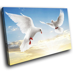 A068 Framed Canvas Print Colourful Modern Animal Wall Art - White Dove Blue Sky Bird-Canvas Print-WhatsOnYourWall
