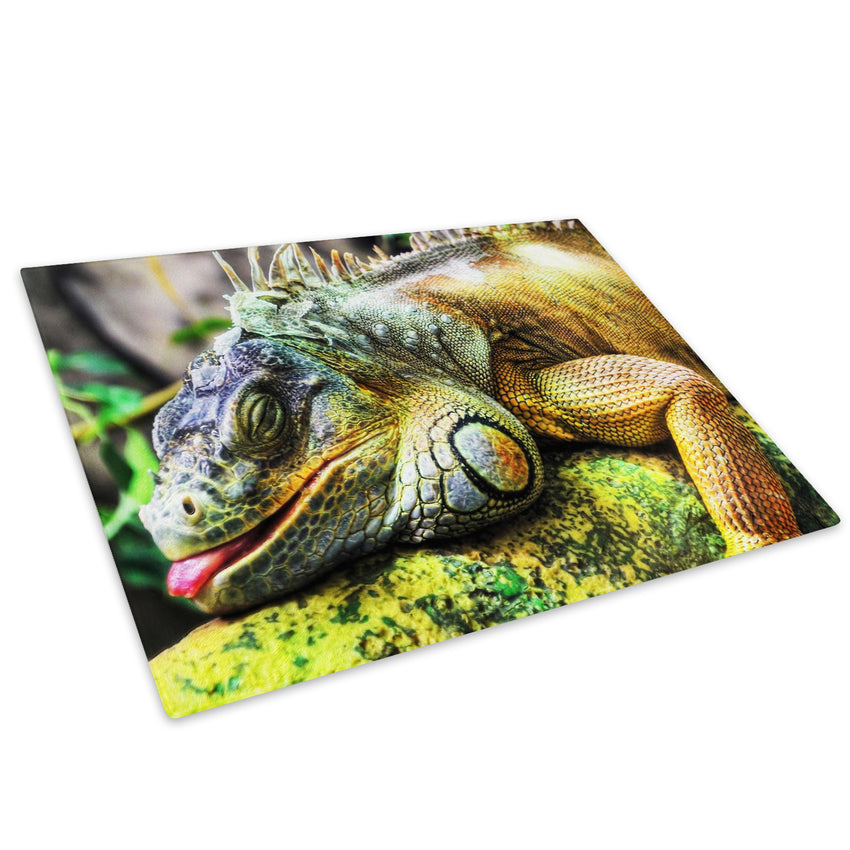 Green Lizard Iguana Jungle Glass Chopping Board Kitchen Worktop Saver Protector - A073-Animal Chopping Board-WhatsOnYourWall