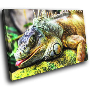 A073 Framed Canvas Print Colourful Modern Animal Wall Art - Green Lizard Iguana Jungle-Canvas Print-WhatsOnYourWall
