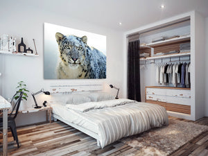 A079 Framed Canvas Print Colourful Modern Animal Wall Art - Snow White Leopard Winter-Canvas Print-WhatsOnYourWall