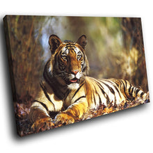 A081 Framed Canvas Print Colourful Modern Animal Wall Art -  Brown Tiger Forest Cool - WhatsOnYourWall