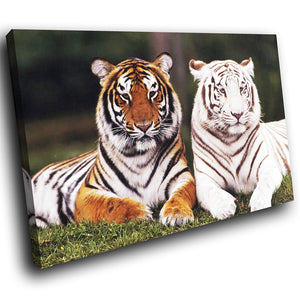 A083 Framed Canvas Print Colourful Modern Animal Wall Art - White Orange Tiger Cool-Canvas Print-WhatsOnYourWall