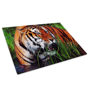 Orange Tiger Cool Green Glass Chopping Board Kitchen Worktop Saver Protector - A084