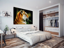 A085 Framed Canvas Print Colourful Modern Animal Wall Art - Orange Tiger Stripes Cool-Canvas Print-WhatsOnYourWall