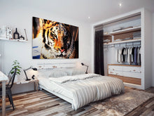 A087 Framed Canvas Print Colourful Modern Animal Wall Art - Orange Tiger Cat Stripes-Canvas Print-WhatsOnYourWall