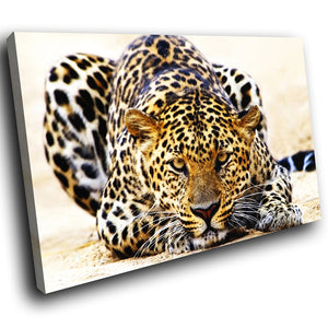 A089 Framed Canvas Print Colourful Modern Animal Wall Art -  Orange Black Leopard Cool - WhatsOnYourWall