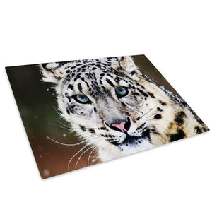 Blue White Snow Leopard Glass Chopping Board Kitchen Worktop Saver Protector - A090-Animal Chopping Board-WhatsOnYourWall