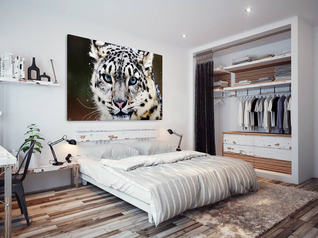 A090 Framed Canvas Print Colourful Modern Animal Wall Art - Blue White Snow Leopard-Canvas Print-WhatsOnYourWall