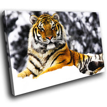 A092 Framed Canvas Print Colourful Modern Animal Wall Art - Orange Tiger Winter Snow-Canvas Print-WhatsOnYourWall