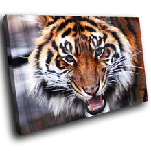 A093 Framed Canvas Print Colourful Modern Animal Wall Art -  Orange Tiger Big Cat Cool - WhatsOnYourWall