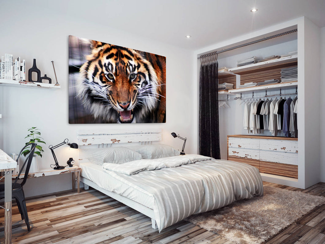 A093 Framed Canvas Print Colourful Modern Animal Wall Art - Orange Tiger Big Cat Cool-Canvas Print-WhatsOnYourWall