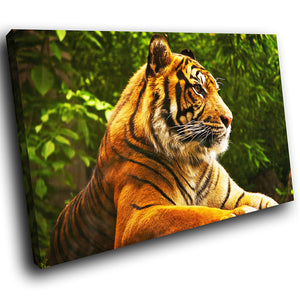 A094 Framed Canvas Print Colourful Modern Animal Wall Art - Orange Tiger Green Forest-Canvas Print-WhatsOnYourWall