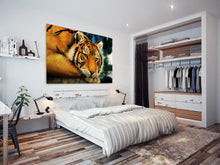 A097 Framed Canvas Print Colourful Modern Animal Wall Art -  Orange Tiger Cool Big Cat - WhatsOnYourWall